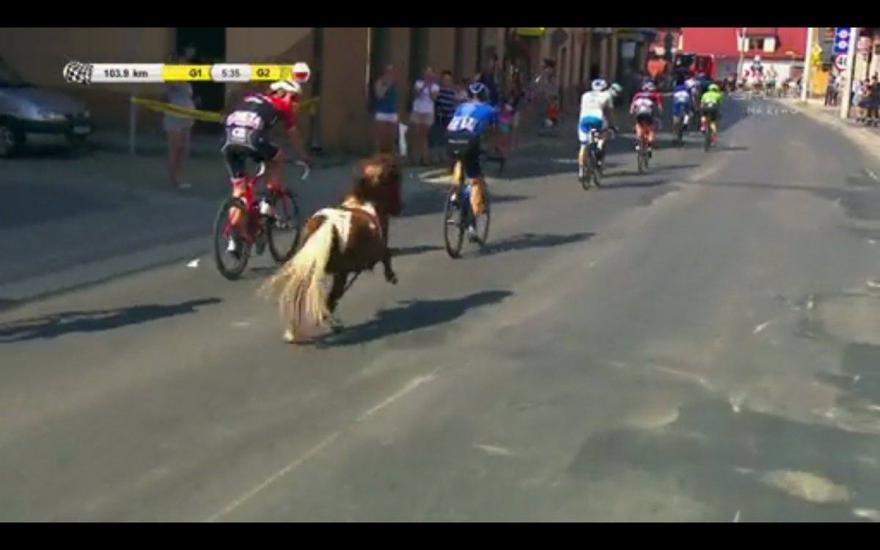 Video: Pony sluit aan bij peloton in de Ronde van Polen
